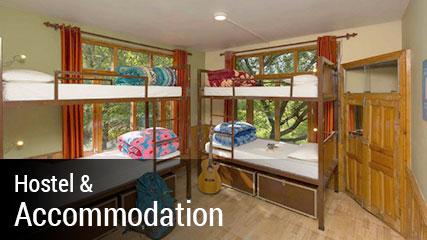 View Hostel Details